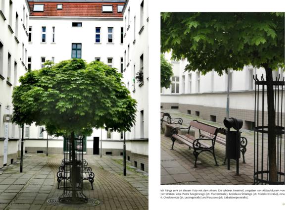 Zwei Aufnahmen von einem Innenhof mit einem Ahorn in Stettin